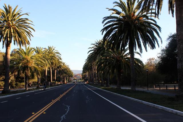 Palo-Alto,-CA